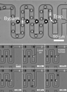 MEMS/マイクロ流体デバイス | 東...